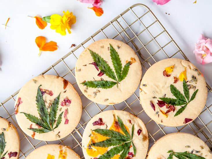 Using Cannabis For Weight Loss